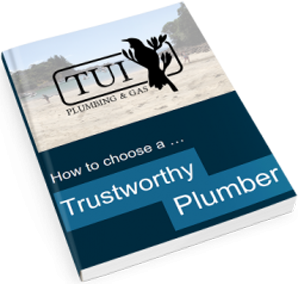 How to Choose a Trustworthy Plumber